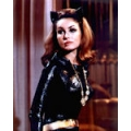 Batman Julie Newmar Photo